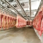 Triển vọng sản phẩm thịt mát