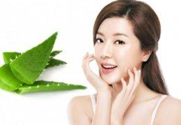 Nhựa nha đam chứa nhiều dưỡng chất có lợi cho da, giúp bạn sở hữu làn da săn chắc, mịn màng.