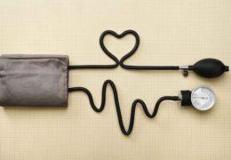 Cây chùm ngây hạ huyết áp hiệu quả thế nào?