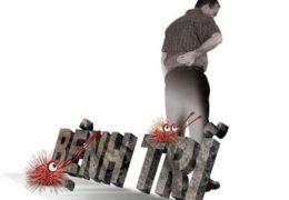 Cách chữa bệnh trĩ từ cây Hoàn ngọc như thế nào?