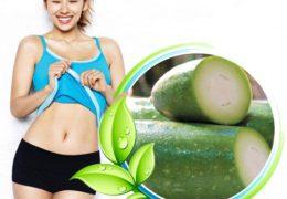 Mách bạn cách giảm cân bằng bí đao – bí quyết giảm cân nhanh nhất
