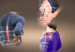Lá lốt – bài thuốc chữa đau xương hiệu qủa
