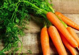 Cách trồng cà rốt tại nhà đạt hiệu quả cao