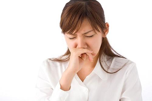 Cây ngải cứu chữa viêm xoang và bí quyết chữa viêm xoang hiệu quả
