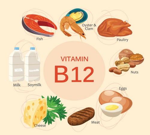 Kết quả hình ảnh cho thực phẩm giàu vitamin b12