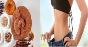 Sử dụng nấm linh chi giảm cân