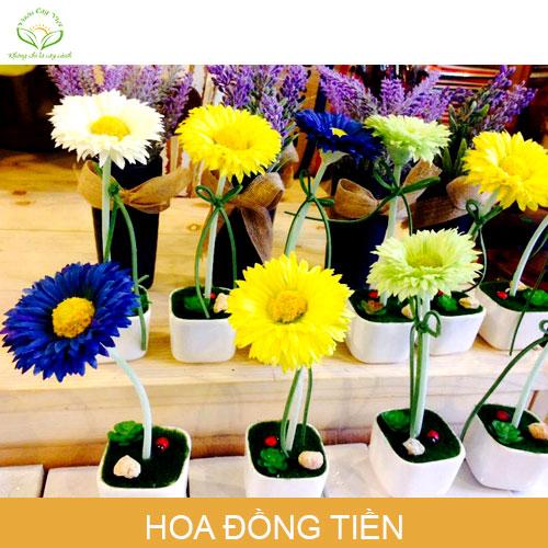hoa_dong_tien-phong-thuy-trong-nha