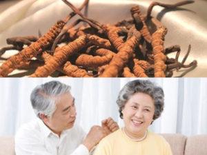 Trên đây là tổng hợp đầy đủ các tác dụng mà đông trùng hạ thảo đối với người già, chắc chắn sản phẩm này sẽ giúp những người thân trong nhà mình có sức khỏe tốt hơn